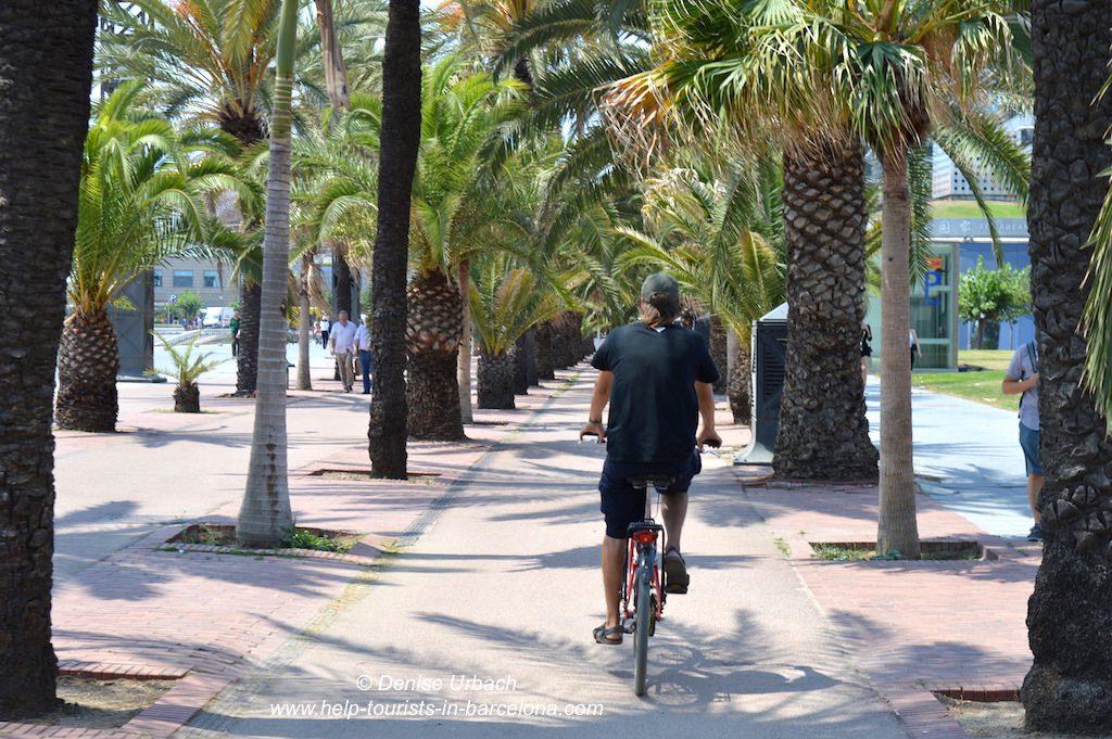 Fahrradtour in Barceloneta